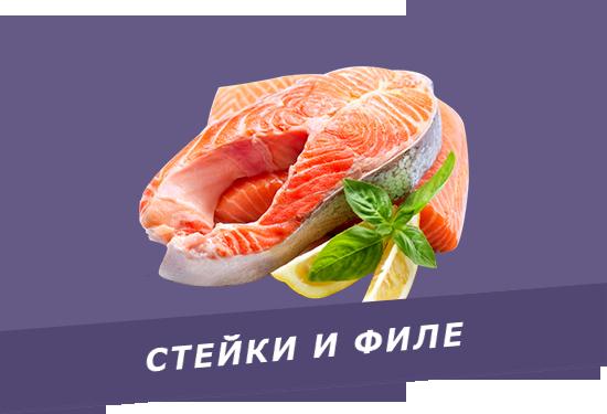 promotion-banner1